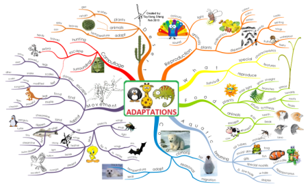 kapadlqk_adaptations-mind-map